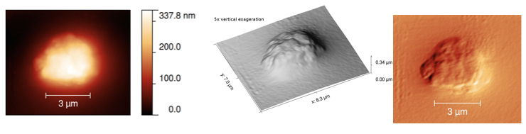 Three representations of the same scan of a calcite particle on the MIDAS Flight Spare instrument